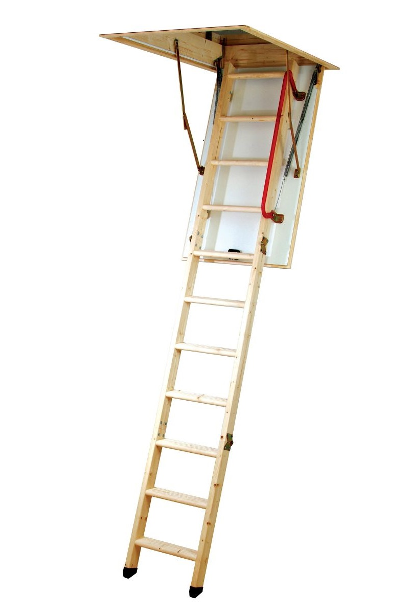 Eco Ladder